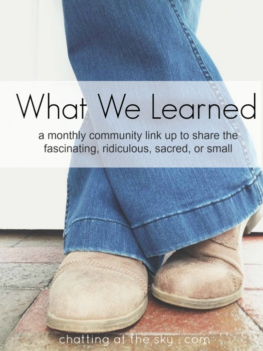 What We Learned - Chatting at the Sky