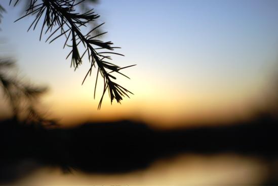lake-at-sunset
