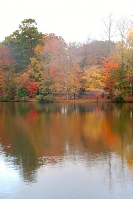 Hamilton Lakes
