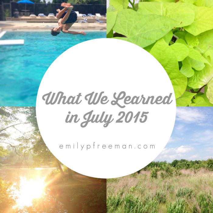 what we learned in July