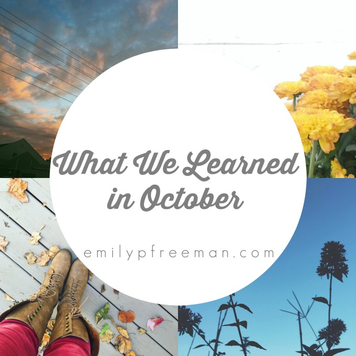 What We Learned in October