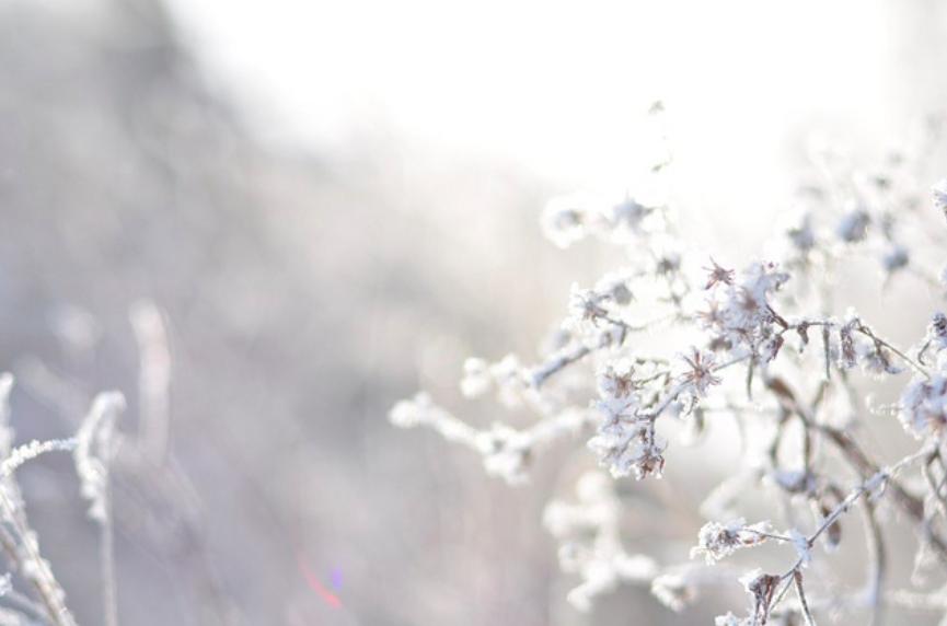 Prepare for an Easy Advent by Ann Voskamp
