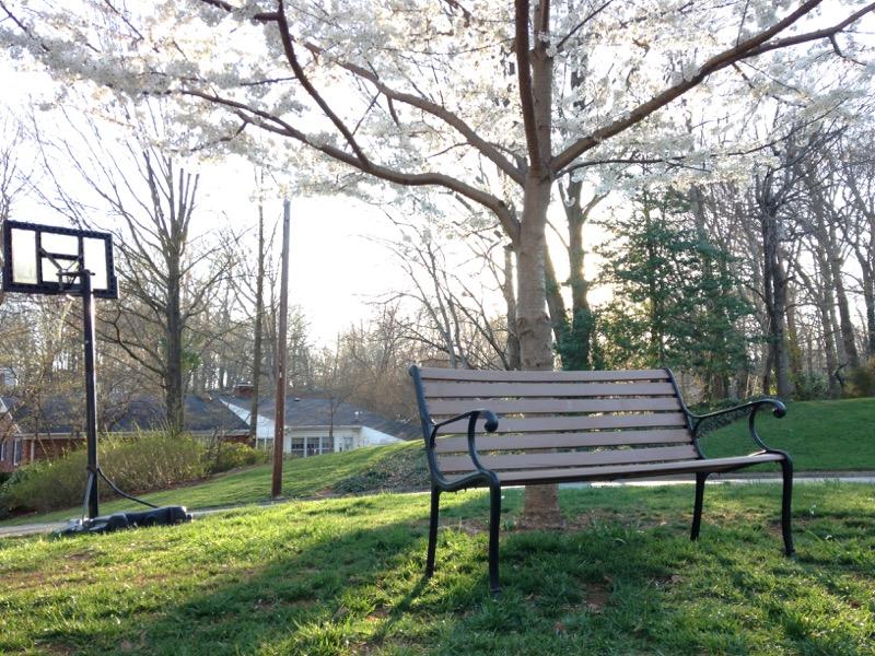 the cul-de-sac bench