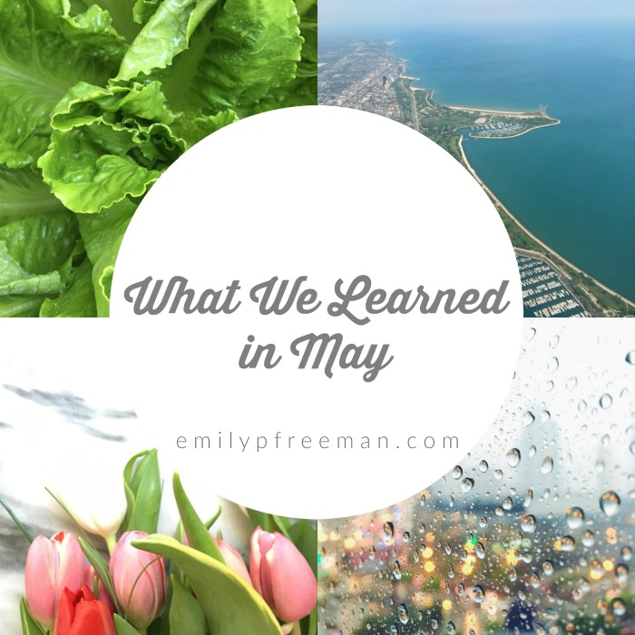 Let's Share What We Learned in May 2016