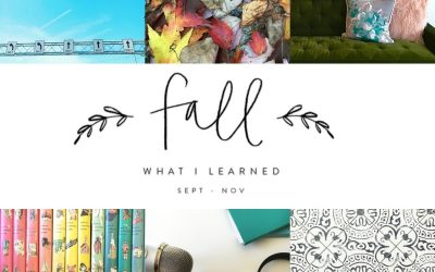 Let's Share What We Learned This Fall