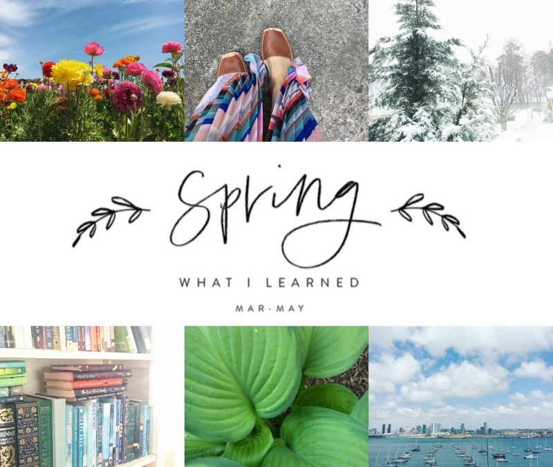 Let's Share What We Learned This Spring