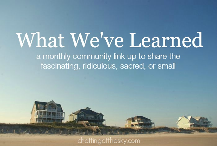 Let's Share What We've Learned This Summer